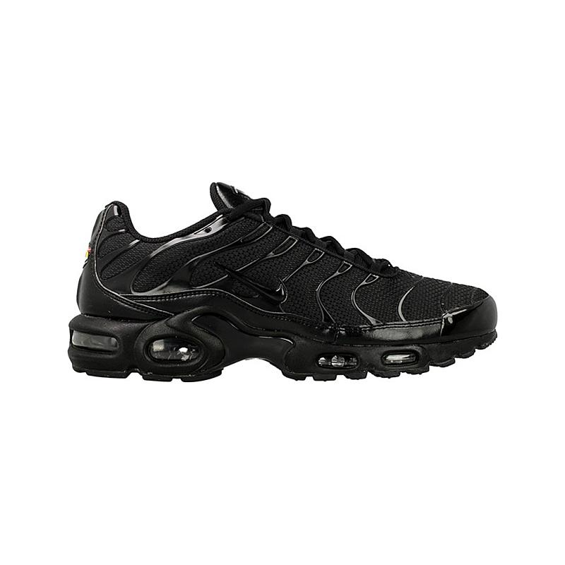 Nike Air Max Plus 604133-050 from 108,00 €